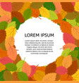 background with autumn leave vector image vector image