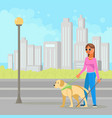 blind woman with guide dog vector image vector image