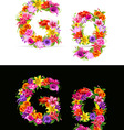 flower font vector image vector image