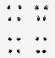 footprints crocodile vector image vector image