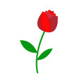 rose icon love and gifts for web on white vector image