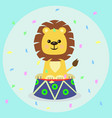 a lion cub on a curbstone in a circus vector image