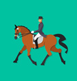 Dressage horse and rider Equestrian sport vector image vector image