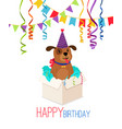 happy birthday puppy in box card vector image vector image