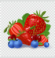 set of berries on checked background vector image