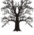 tree oak silhouette vector image