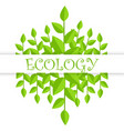 ecology banner with green branches and leaves vector image vector image