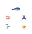 flat icon sea set of cachalot tentacle sea star vector image vector image
