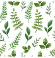 green herbs green cute floral seamless pattern vector image vector image