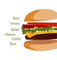 ingredients in burger on white background vector image vector image