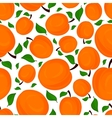 Seamless pattern of apricots vector image vector image