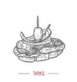 tapas in hand drawn graphic style vector image vector image