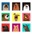 cute comic puppy heads vector image