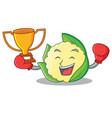 boxing winner cauliflower character cartoon style vector image vector image