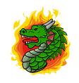 Dragon Head vector image vector image