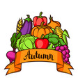 harvest festival background autumn vector image vector image