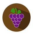 icon grape vector image vector image