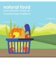 Shopping basket full of healthy organic vector image vector image
