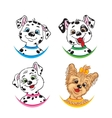 Three Dalmatians and one Yorkshire Terrier vector image