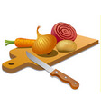 vegetables for cooking vector image vector image