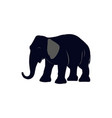 cartoon of elephant icon for vector image
