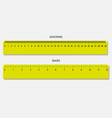 rulers marked in centimeters and inches vector image vector image