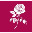 White silhouette of rose vector image vector image