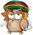 rasta owl cartoon vector image