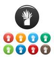 aloe cactus pot icons set color vector image vector image