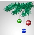 Branch Of Christmas Tree With Balls vector image