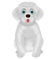 Cute white dog cartoon vector image vector image