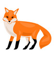 forest fox icon cartoon style vector image vector image