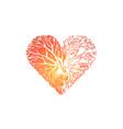 love growing from heart metaphor kindness branche vector image