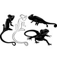 set silhouettes reptiles lizard chameleon vector image