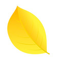 autumn yellow leaf icon flat style vector image vector image