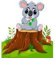 cartoon koala posing on tree stump vector image vector image