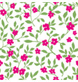 flowers in blossom twigs and blooming pattern vector image vector image