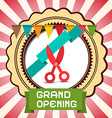Retro Grand Opening Card with Flags - Label and vector image vector image