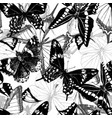seamless pattern with hand drawn butterflies vector image vector image