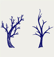 Trees silhouettes vector image vector image