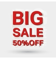 Big sale icon vector image vector image