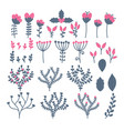 collection of flowers berries leaves and vector image vector image