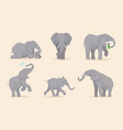 elephant cute african wild animals large strong vector image