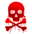 Skull blood vector image vector image
