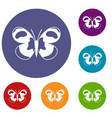 spotted butterfly icons set vector image vector image