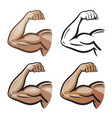 strong male arm hand muscles biceps icon or vector image vector image