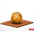 Symbol of a basketball game and field vector image vector image