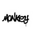 graffiti monkey word sprayed in black over white vector image vector image