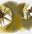 lush stylized fan palm leaves on light background vector image vector image