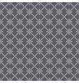 spiderweb pattern vector image vector image